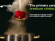 The primary care pressure cooker. Overcoming the challenge of clinical documentation