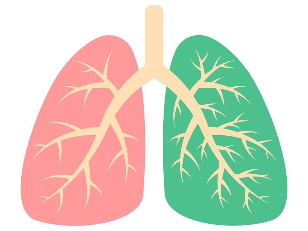 healthy-lung-and-diseased-human-lung-respiratory-system-patient-with-vector-id1263450787