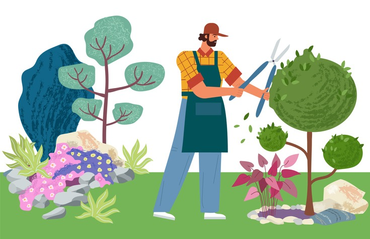 Gardener cuts a tree. Pruning bushes and garden maintenance vector illustration. Man cuts the leaves on landscape design background.