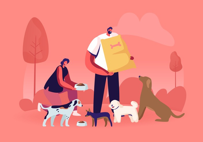 Friendly Male and Female Volunteer Characters Feeding Dogs in Animal Shelter or Pound. Young Woman Giving Food to Homeless Puppies in Bowl, Man Hold Nutrition Package Cartoon Flat Vector Illustration