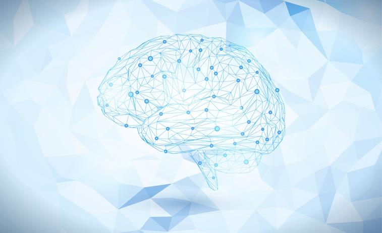 Polygonal brain isolated on light blue BG
