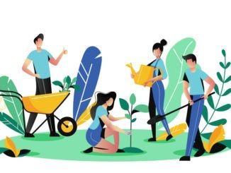 Why gardening should become your new hobby