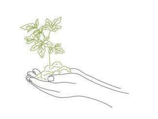 Plants that offer mental health benefits
